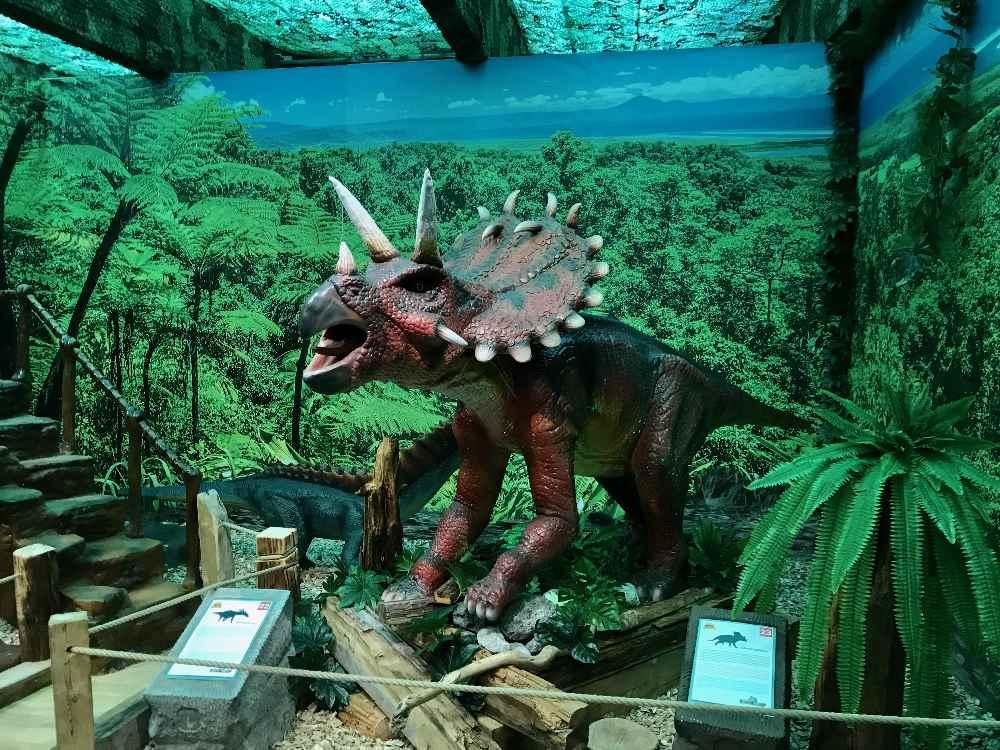 Viele unterschiedliche Dinosaurier kannst du im Dinoland Vomperbach sehen.