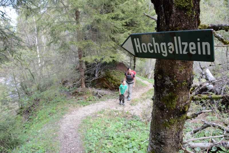 Die Wanderung durch die Gallzeiner Schlucht befindet sich zwischen Hochgallzein und Koglmoos