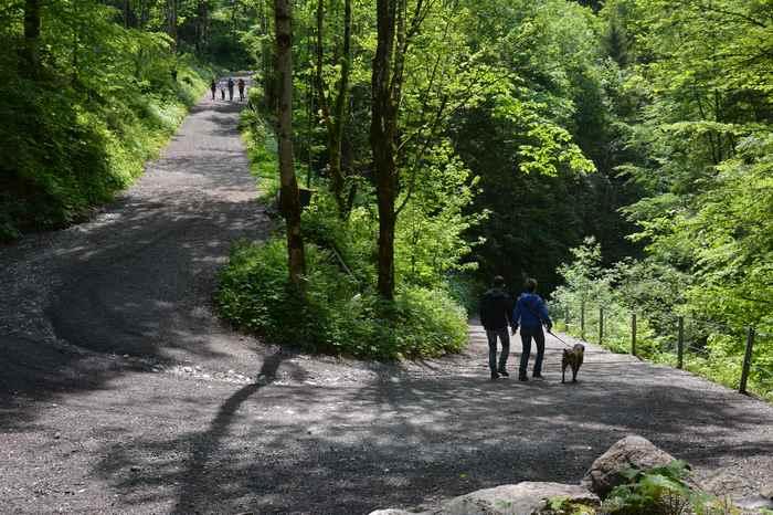 Den Pilgerweg nach St. Georgenberg kann man auch gut mit dem Kinderwagen wandern in Tirol