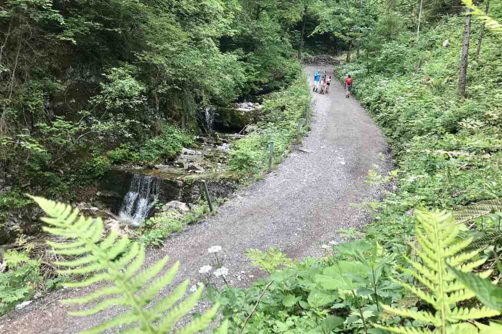 Auf dem breiten Wanderweg wandern wir hinauf in Richtung St. Georgenberg