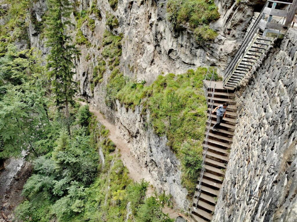 Top Fotomotiv in der Ehnbachklamm: Die steile Treppe beim Wehr