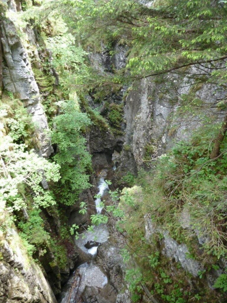 Blick in die wilde Weissenbachklamm